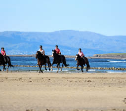 Group Riding at Island View Riding Stables