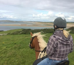 Horse rider looking over beach