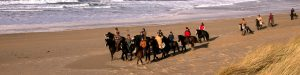 Riding for Groups on beach