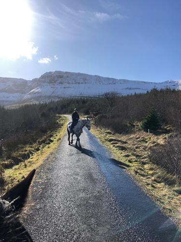 Horse around Horseshoe Gleniff