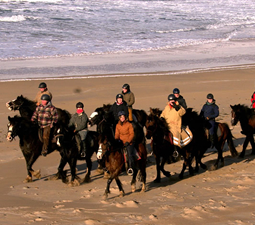 Group from Island View Riding on Beach