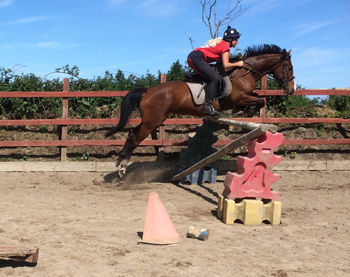 Jumping Private Lesson